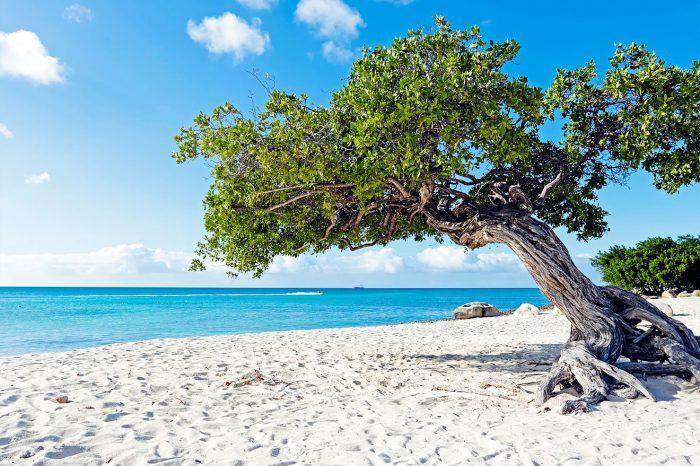Aruba – Enero a abril 2021