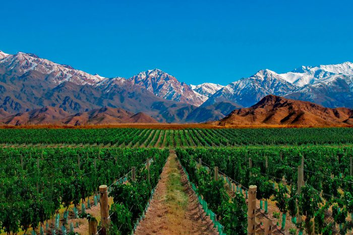 Argentina: Mendoza – Octubre 2021 a junio 2022