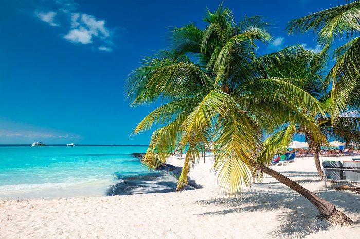 Cancún – Febrero a abril 2022