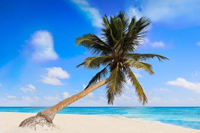 Cancún – Enero a febrero 2021