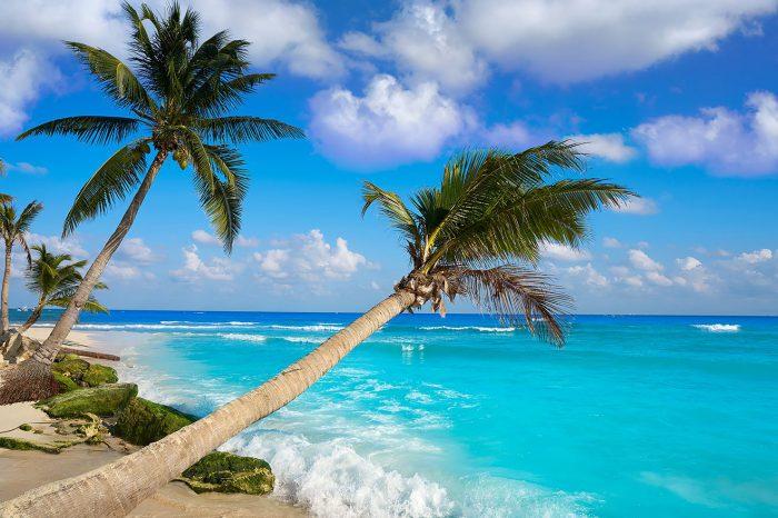 Promo: Playa del Carmen – Agosto a octubre 2021
