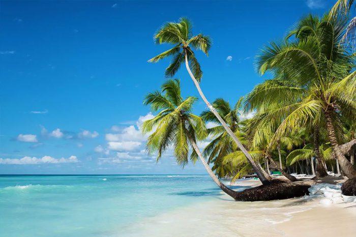 Punta Cana – Mayo a octubre 2021